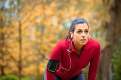 Female athlete taking a running work out rest. Tired female runner taking a break. Sporty woman breathing and resting on running training in autumn Stock Photography