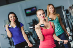 Female athletes perform exercises with dumbbells. Stock Photography