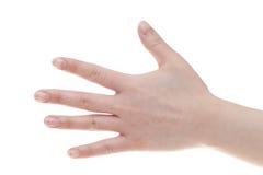 Female back hands. Isolated on white background stock images