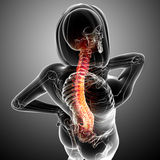 Female back pain Stock Photo