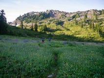 Female Backpackers in Field of Wildflowers Stock Image