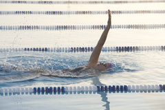 Female Backstroke. Swimmer In the Morning Royalty Free Stock Images