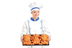 Female baker holding baked croissants stock images