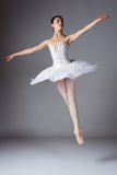 Female ballet dancer. Beautiful female ballet dancer on a grey background. Ballerina is wearing a white tutu and pointe shoes Royalty Free Stock Images