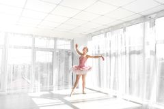 Elegant female ballet dancer in pink tutu practicing and smiling Stock Photography