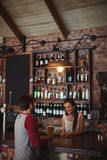 Female bar tender interacting with customer Royalty Free Stock Image