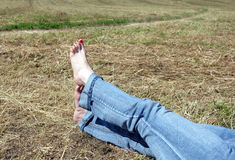 Female bare feet with red nails on dry grass on a meadow Stock Image