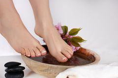 Female bare feet on wooden bowl with water in spa salon and decoration stones and flowers isolated on white background royalty free stock images