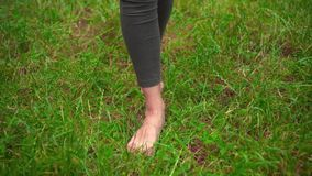 Female bare legs on the grass. Walking barefoot on the grass, the concept of freedom and happiness. Female bare legs on the grass. Walking barefoot on the green stock video footage