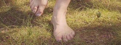 Female barefoot legs Stock Photography