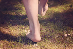 Female barefoot legs walking in the forest Royalty Free Stock Images