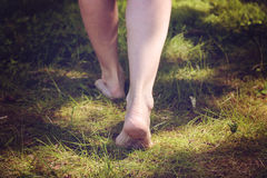 Female barefoot legs walking in the forest Stock Image