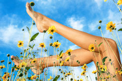 Female barefoot legs in yellow flowers against sky background Royalty Free Stock Photo