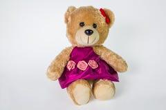 Female bear on isolation Royalty Free Stock Photo