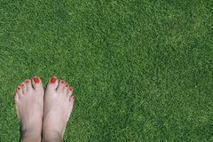 Female beautiful feet with red nails standing on green grass. Royalty Free Stock Photos