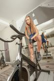 Female Beautiful Young Sexy Gym Cycling Royalty Free Stock Image