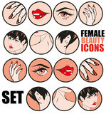 Female Beauty Icons Set Vector Retro Classic Comics Pin Up Style Stock Image