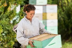 Female Beekeeper In Apiary royalty free stock photos