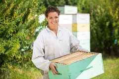 Female Beekeeper Carrying Honeycomb Crate Royalty Free Stock Photos