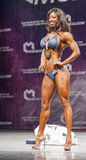 Female bikini fitness model Evelyn Dirocie shows her best front Royalty Free Stock Image