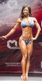 Female bikini fitness model Evelyn Dirocie shows her best front Stock Photography