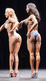 Female bikini fitness model Evelyn Dirocie shows her best side p Stock Image