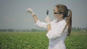 Female biologist examines pests