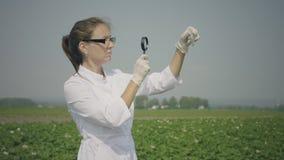 Female biologist inspecting pests