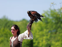 Female bird tamer. Arville,France,May 23rd 2010: A female bird tamer with a hawk on her hand during a birds tamer show.Main focus is on the tamer's glove.This Royalty Free Stock Images