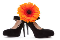 Female black shoes with orange flower Stock Image