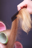 Female blond hair head curlers rollers hairdresser beauty salon Stock Photos