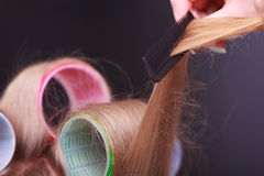 Female blond hair head curlers rollers. Salon. Stock Images