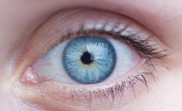 Female blue eye Stock Photos