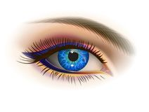 Female blue eye. Blue female eye and makeup. Realistic vector image Stock Images