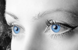Female blue eyes Royalty Free Stock Images