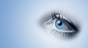 Female blue eyes Royalty Free Stock Image