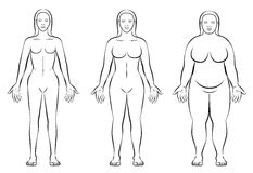 Female Body Constitution Types Thin Fat Normal Weight. Female body constitution types - thin, normal weight and fat figure of a woman - ectomorph, mesomorph and Stock Image