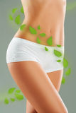 Female body with green herbal leaves around Stock Images