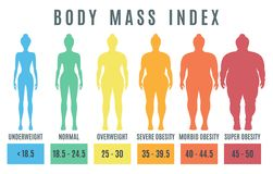 Female body mass index. Normal weight obesity and overweight ill stock illustration
