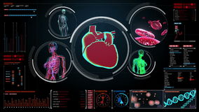 Female body scanning blood vessel, lymphatic, heart, circulatory system in digital display. Dashboard stock video footage