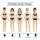 Female body shape set. Set of five different types of female figures - hourglass, apple, pear, rectangle, inverted triangle. Vector Stock Photo