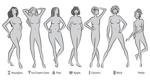 Female Body Shapes. 7 female body shapes in greyscale vector illustration