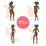 Female body shapes Royalty Free Stock Images