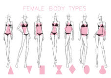 Female body shapes Royalty Free Stock Photography