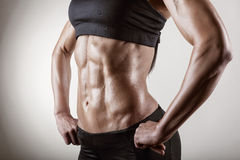 Female body. The body sports an attractive woman on gray background Royalty Free Stock Image