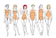 Female body types. Royalty Free Stock Image
