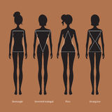 Female body types silhouettes. Vector illustration of female body types silhouettes royalty free illustration