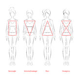 Female body types. Royalty Free Stock Photos