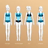 Female body types. Vector illustration of female body types Stock Image
