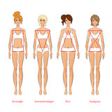 Female body types Stock Photos